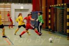 Dinacupen 2014 Töreboda sporthall